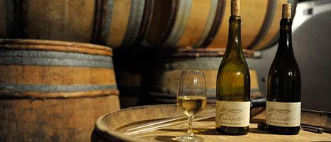 tasting white wine France