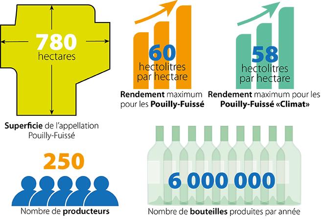 L'appellation Pouilly-Fuissé en quelques chiffres