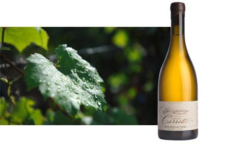 Vin blanc Bourgogne Pouilly-Fuissé Prés des Gourds